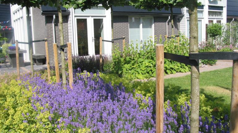 Strak tuinontwerp in amersfoort met natuurlijke for Tuinontwerp natuurlijke tuin