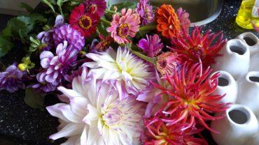 Pluk je eigen bloemen uit je tuin