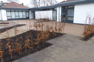 borders en bestrating belevingstuin leusden