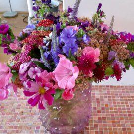 Mijn top 5 eenjarige bloemen