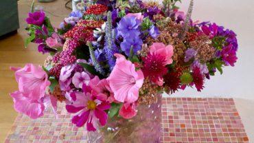 De top 5 eenjarige bloemen uit de pluktuin.