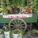 Moestuin in je eigen tuin