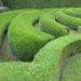 Welke heg of tuinafscheiding ga jij kiezen?