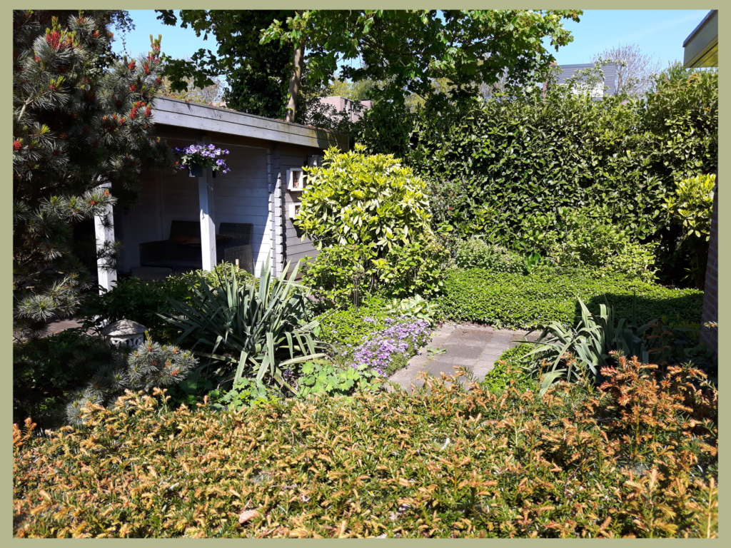 renovatie tuin