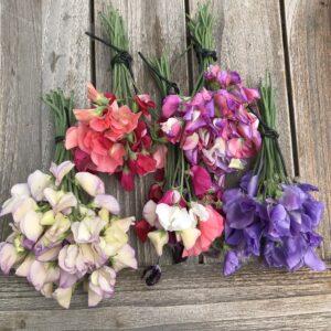 Bloemen plukken uit je eigen tuin