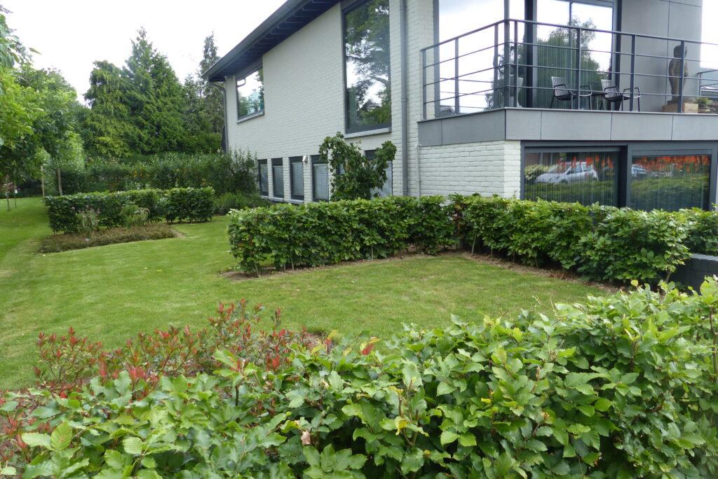 zijgedeelte tuin