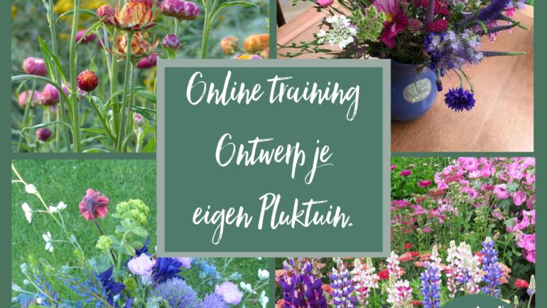 Online workshop Ontwerp je eigen pluktuin!